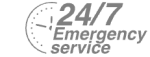 24/7 Emergency Service Pest Control in East Ham, Beckton, E6. Call Now! 020 8166 9746